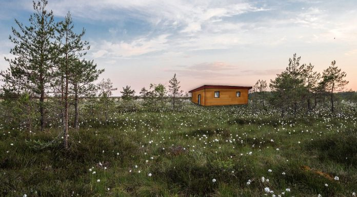 Community Building mit der Libelle Foundation